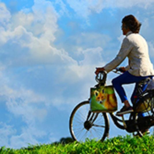 Afbeelding bij Fiets van de zaak? De fietsregeling en de WKR